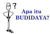 Arti Kata Budidaya