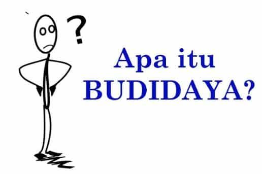 √ Arti Kata Budidaya : Pengertian, Manfaat, Contoh Beserta Kesimpulanny