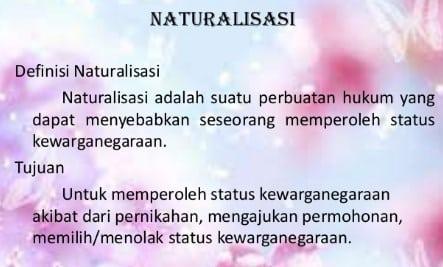 √ Definisi Naturalisasi : Syarat, Proses, Jenis Dan Contohnya