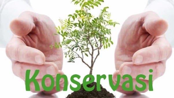 Konservasi Adalah