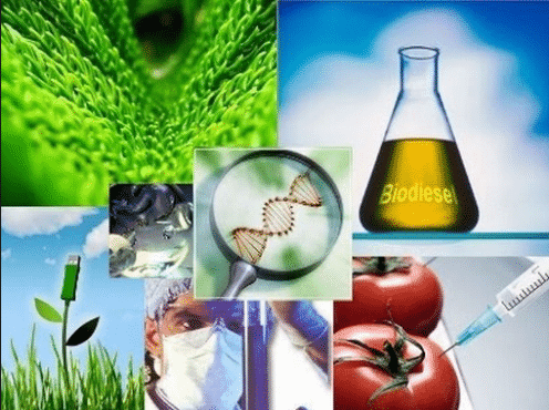 Apa Yang Dimaksud Bioteknologi