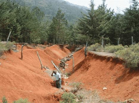 Pengertian Degradasi Lingkungan