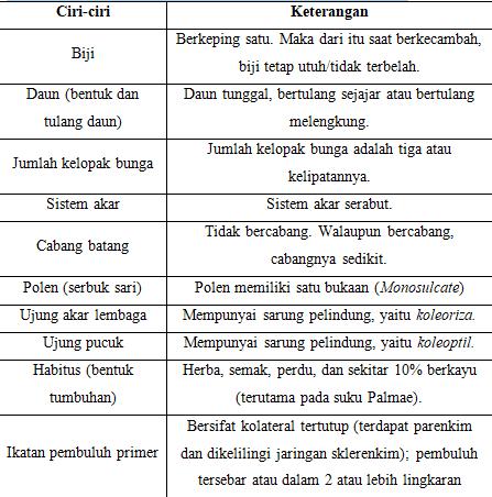 ciri umum tumbuhan monokotil