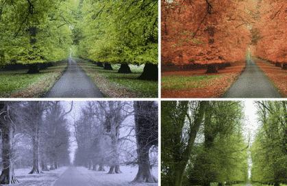 gambar musim di dunia