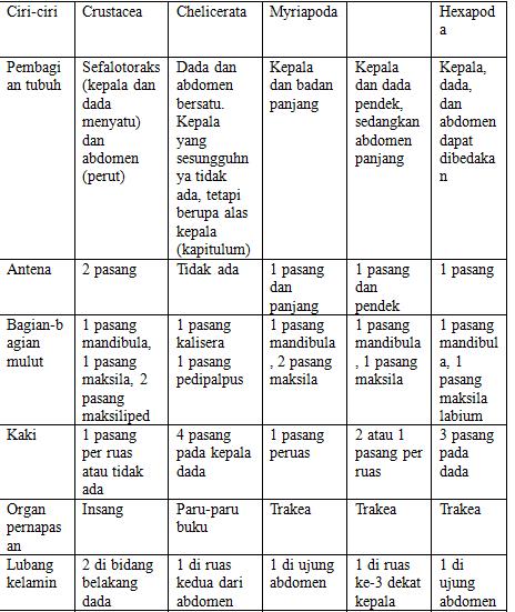 karakteristik arthropoda