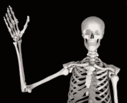 gambar tulang manusia