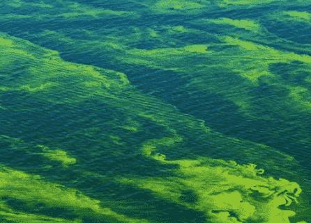 danau erie