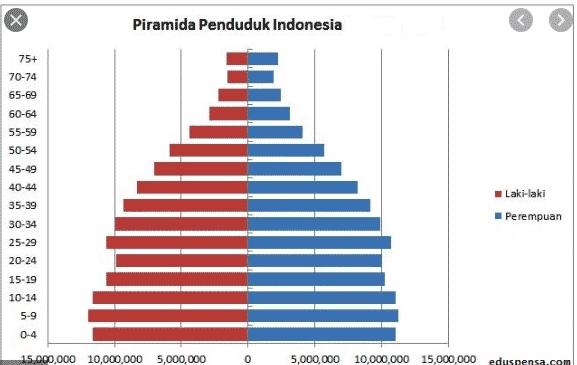 gambar piramida penduduk