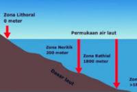 gambar zona litoral