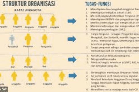 Organisasi-Adalah